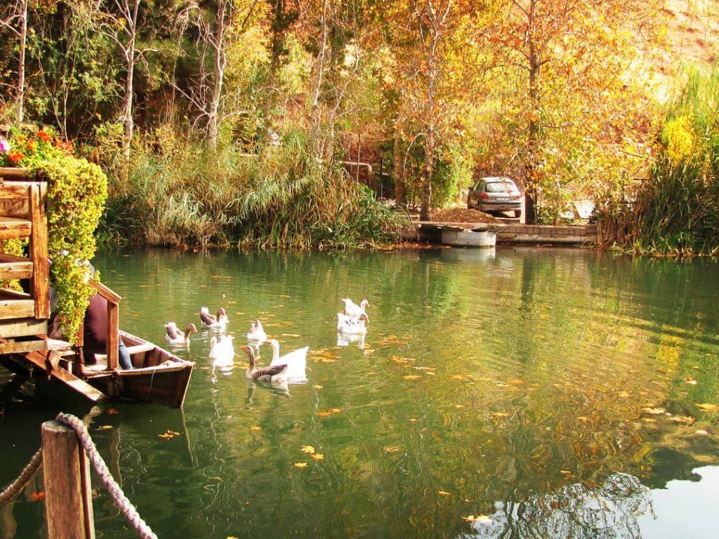تصویر شماره 1 روستای ترقیان