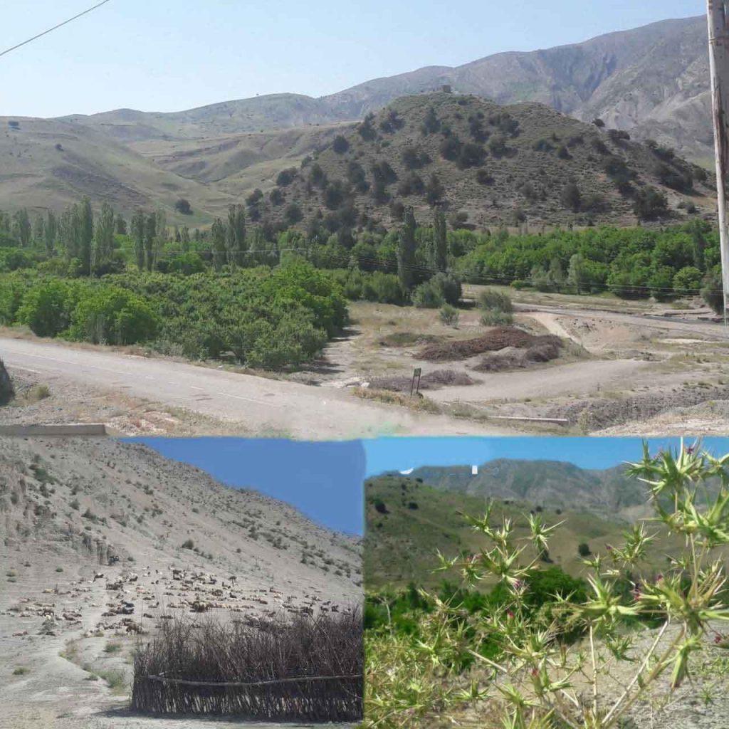 روستای محمد دورانلود عکس از نمای باز