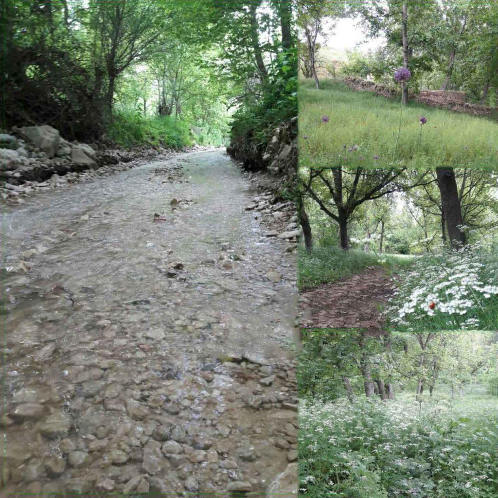 روستای زوارم چشمه پر آب