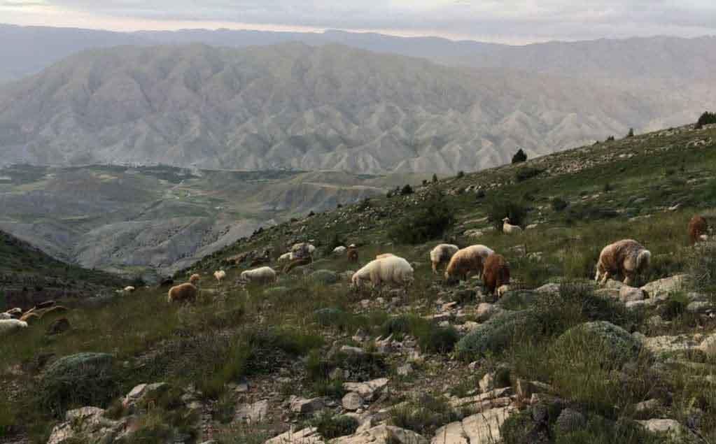 هدر پست روستای محمد دورانلو