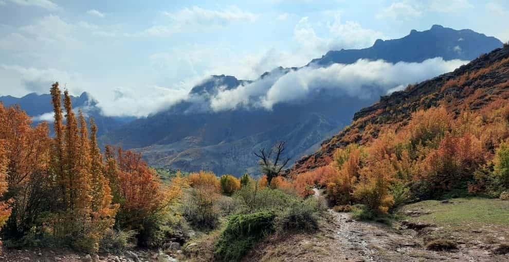 تصویر زیبا از روستای تم